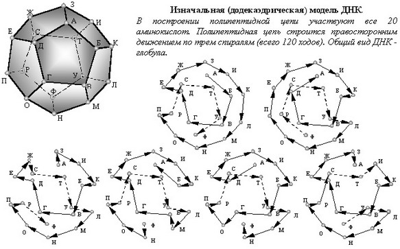 инструкция по изготовлению сферы золотого сечения - фото 2